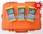 上海特价供应DS-1防腐层绝缘电阻测量仪
