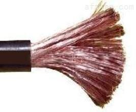 矿物质电缆 YTTW 3X25