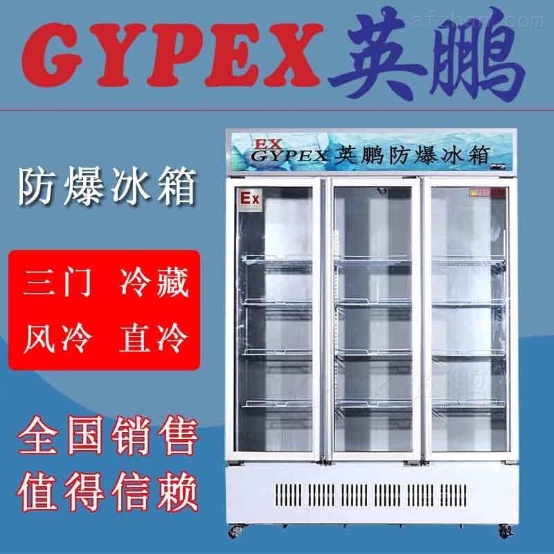 北京防爆冷藏冰柜