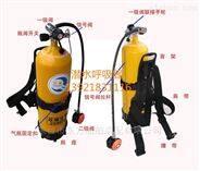潜水呼吸器装置