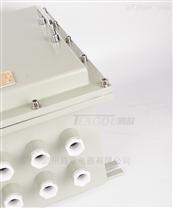 工业用防爆电源模块箱钢板焊接防爆箱壳体