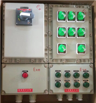BXM-T壁挂式多回路控制防爆配电箱