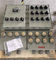 BXX-制粒机防爆检修箱厂家直销
