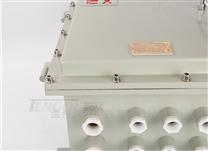 钢板焊接防爆电源模块箱壁挂式防爆接线箱