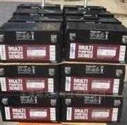 美国大力神蓄电池CD12-120威海销售