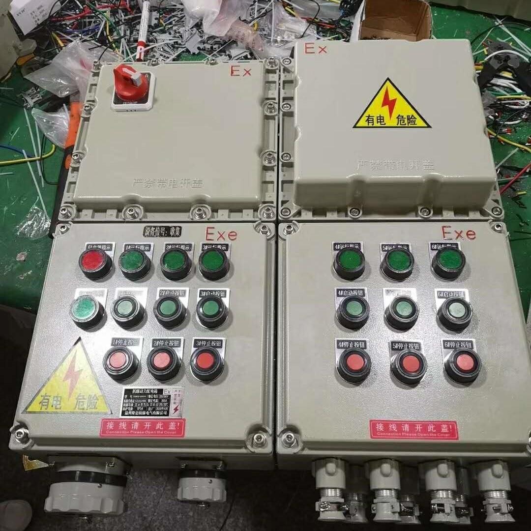 BXM(D)51-T2/20/XX/WF2防爆配电箱