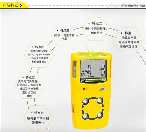 BW 便携式复合可燃气体检测仪 MC2-4