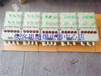 BXMD53-6/100A防爆照明动力配电箱
