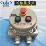 BZA-A2D1防爆按钮盒IIC带急停按钮