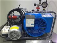 电厂化工用BAUER100-TE电动呼吸器充气泵