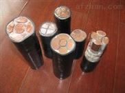 VV22铠装电力电缆ZRC-VV22-4x6mm2电缆