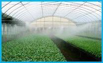 花草温室大棚加湿机器