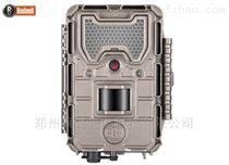 博士能夜视红外相机119874C 野生动物记录仪