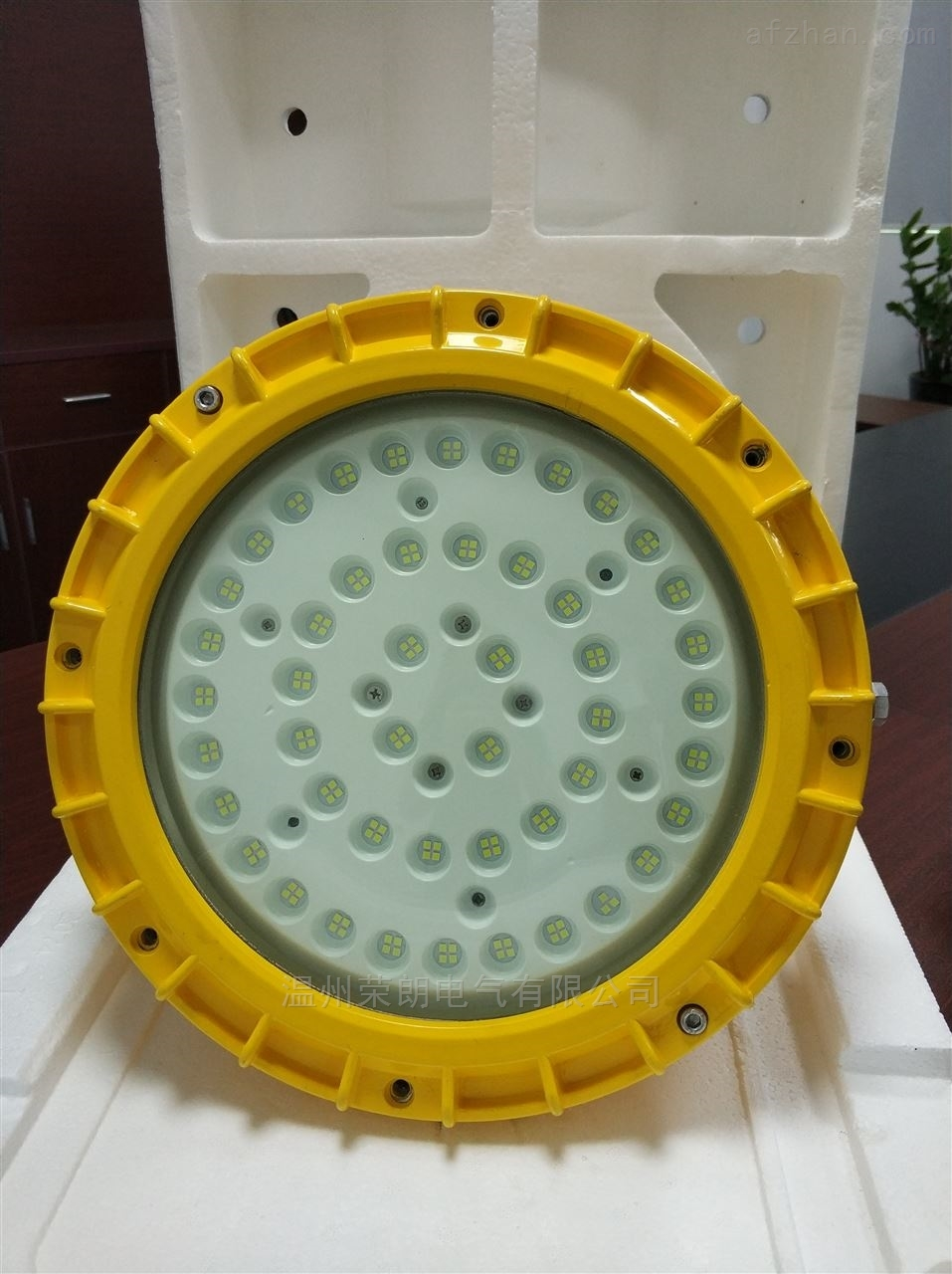 高品质性价比高100W化工厂防爆照明灯RLB155