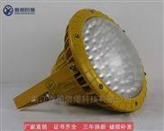 电厂100WLED防爆照明灯 免维护防爆节能灯