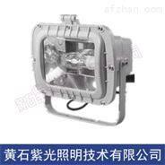 内场泛光灯GF9153-J70_紫光GF9153厂家